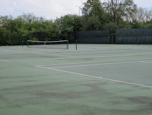 Plum Grove Park Missing Nets