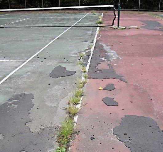 Waverly Park Decay