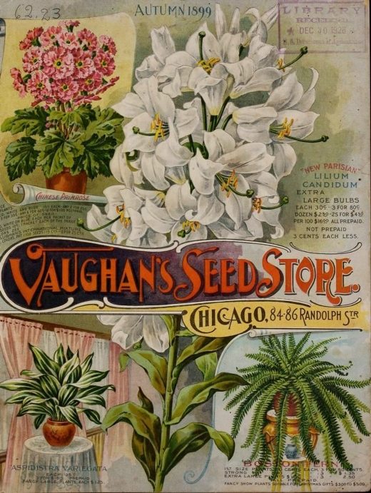 Vaughan Catalog Cover